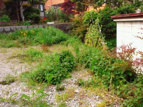北九州市小倉北区にて草むしりでした。