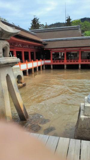今日は広島の宮島にお参りに行きました。